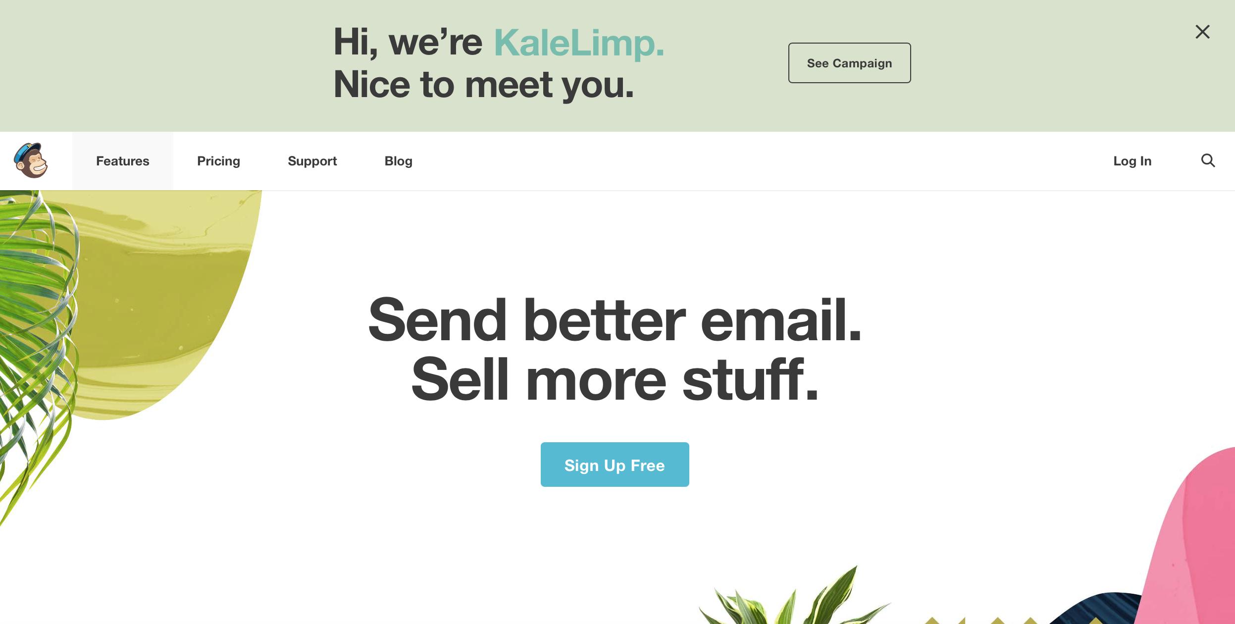 Blog Image: MailChimp.png