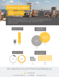 Dynamis Before & After Case Study